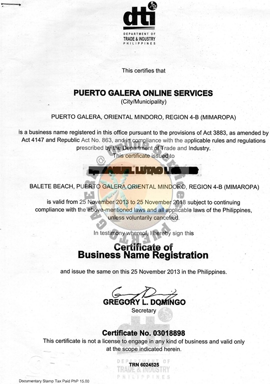 About Us Puerto Galera Online Services
